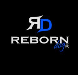reborndog.com